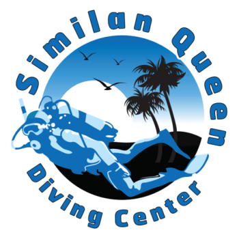 cropped-SIMILAN-LOGO-white-stoke.png